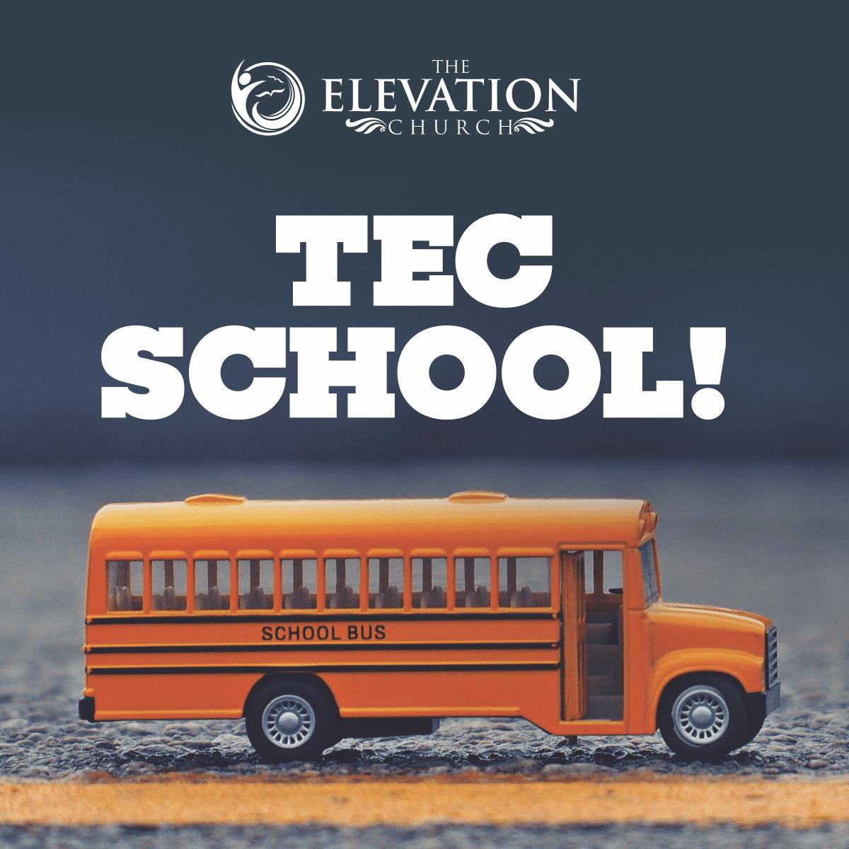 Courses at TEC